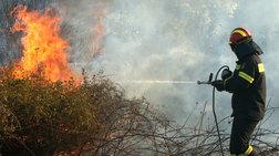 Μάχη με τις φλόγες στo Λασίθι