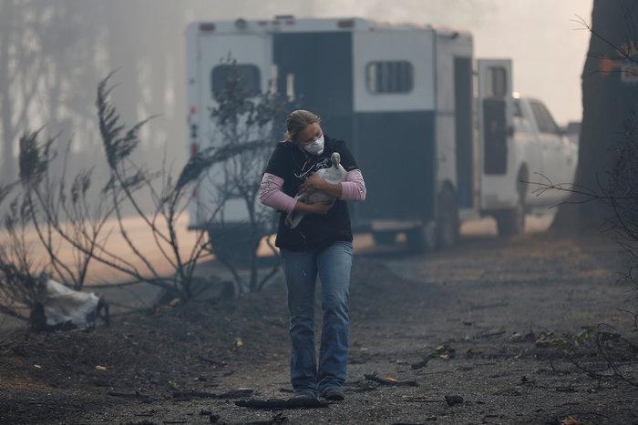 Πυρκαγιές στην Καλιφόρνια: Τουλάχιστον 25 νεκροί, απειλείται το Μαλιμπού - εικόνα 4