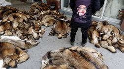 Ισχυρό μήνυμα από τον Ζαν-Πολ  Γκοτιέ να εγκαταλείψει τη γούνα