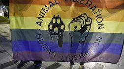 Πορεία με αφορμή τη Διεθνή Ημέρα Μνήμης τρανς θυμάτων