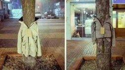 Λάρισα: Ντύνουν τα δέντρα με μπουφάν για τους αστέγους