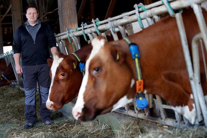 """Ελβετία: Οι πολίτες είπαν """"όχι"""" στις """"αγελάδες με κέρατα"""" - εικόνα 3"""