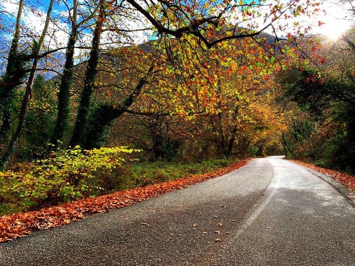 Στο δρόμο, τα χρώματα αλλάζουν ασταμάτητα
