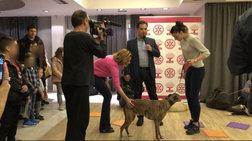 Εκδήλωση Άδωνι: Παιδιά διάβαζαν αρχαία σε σκύλους