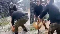 Ενοχοι οι φαντάροι που είχαν πετάξει ζωντανό σκύλο σε γκρεμό στην Κόνιτσα