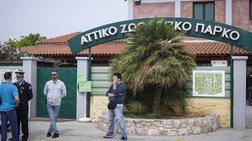kontra-attikou-parkou-filozwwn-gia-ta-duo-tzagkouar