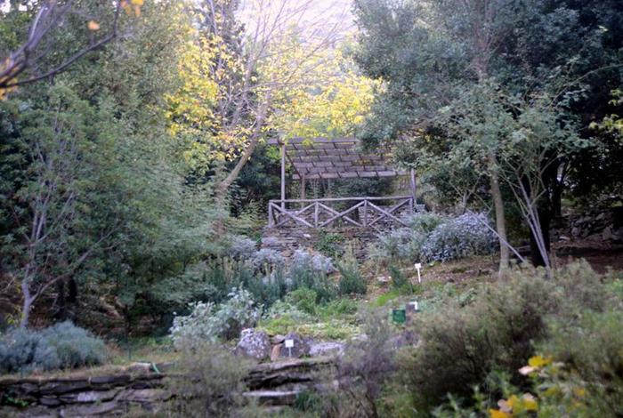 Ο Βοτανικός Κήπος σας μεταφέρει αλλού...