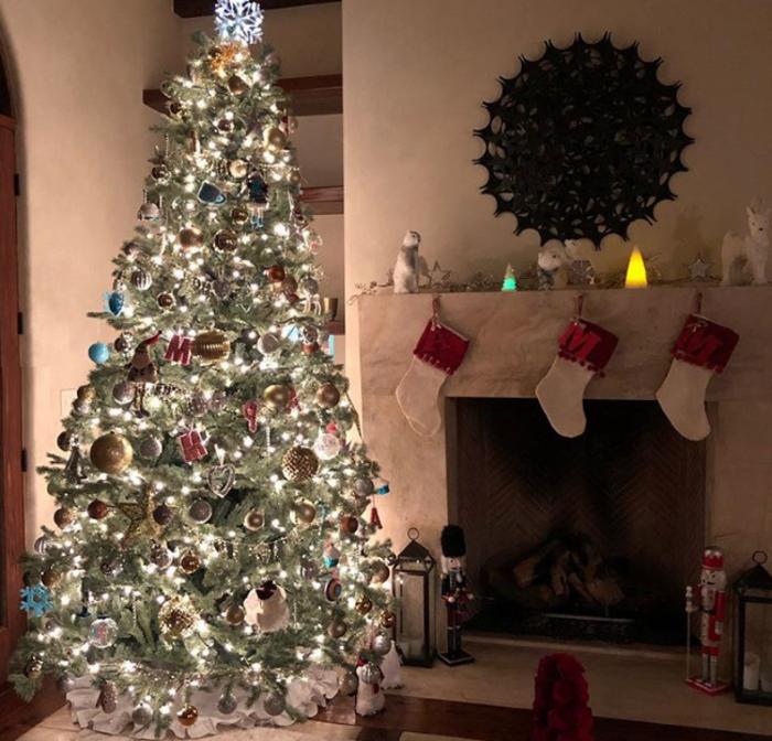Χριστούγεννα στα στολισμένα σπίτια των Ελλήνων celebrities (εικόνες) - εικόνα 5