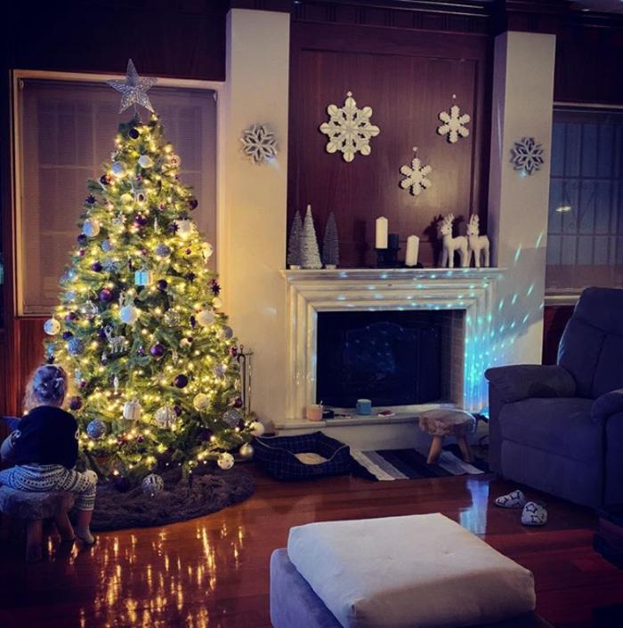 Χριστούγεννα στα στολισμένα σπίτια των Ελλήνων celebrities (εικόνες) - εικόνα 6