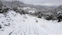 Στους 70 πόντους το χιόνι στα ορεινά των Τρικάλων
