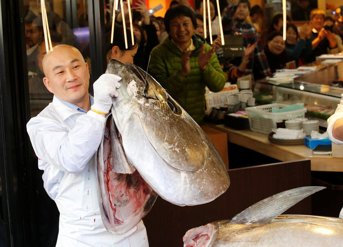Τόνος στην Ιαπωνία πουλήθηκε 2,7 εκατ. ευρώ σε δημοπρασία [Εικόνες] - εικόνα 2