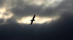 Θεοφάνεια με συννεφιά και τσουχτερό κρύο