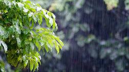 Προβλήματα από τις ισχυρές βροχοπτώσεις στην Ήπειρο