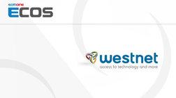 tis-luseis-tis-softone-epelekse-i-westnet-gia-ti-mixanografisi-tis
