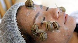 De Standaard: Τα σαλιγκάρια και η περιποίηση προσώπου