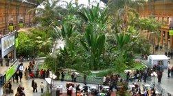 Μαδρίτη: Ένας υπέροχος κήπος στον σιδηροδρομικό σταθμό Ατότσα