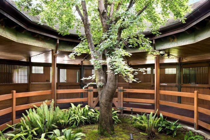 Το σπίτι-παράδεισος της Μισέλ Πφάιφερ που κοστίζει 29,5 εκ. δολάρια - εικόνα 6