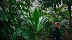 Οι βραβευμένες φωτογραφίες των ωραιότερων κήπων και φυτών