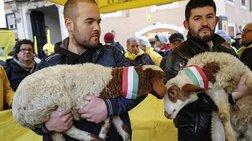 Κλειστά καταστήματα και πορείες συμπαράστασης στους ιταλούς γεωργούς