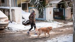 Καταιγίδες και χιόνια σε όλη την Ελλάδα - Χιονοπτώσεις Και στην Αττική
