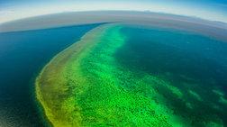 Αργοπεθαίνει ο Μεγάλος Κοραλλιογενής Ύφαλος