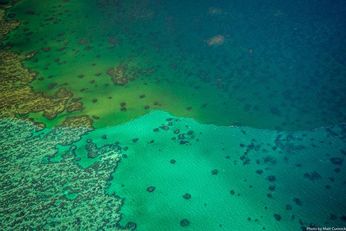 Αργοπεθαίνει ο Μεγάλος Κοραλλιογενής Ύφαλος - εικόνα 2