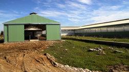 Καταγγελία ΚΕΕΡΦΑ για ξυλοδαρμό αλλοδαπού εργάτη στη Λάρισα