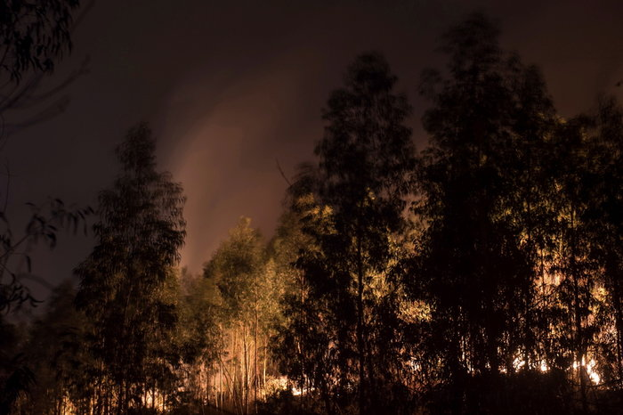 Ισπανία: Εκατό πυρκαγιές στον βορρά εξαιτίας των υψηλών θερμοκρασιών - εικόνα 2