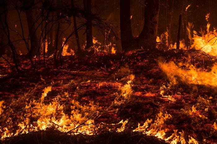 Ισπανία: Εκατό πυρκαγιές στον βορρά εξαιτίας των υψηλών θερμοκρασιών - εικόνα 3
