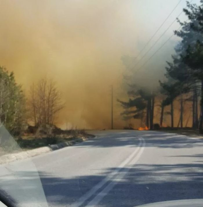 Μεγάλη φωτιά πάνω από την Πύλη Τρικάλων-Ισχυρή δύναμη της Πυροσβεστικής