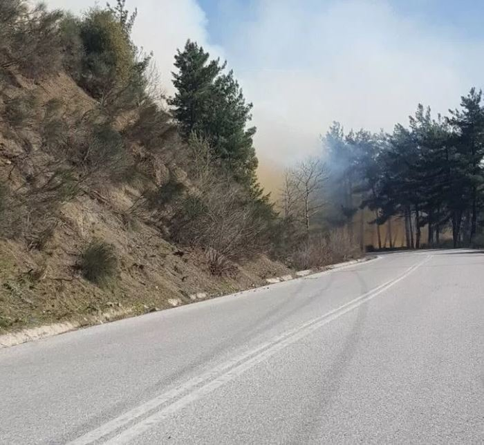 Μεγάλη φωτιά πάνω από την Πύλη Τρικάλων-Ισχυρή δύναμη της Πυροσβεστικής - εικόνα 2