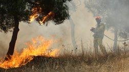 Τρίκαλα: Συνελήφθη ηλικιωμένη για την πυρκαγιά στις Λογγιές