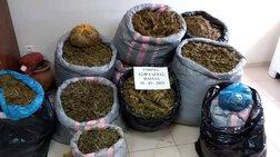 Εξαρθρώθηκε σπείρα διακίνησης ναρκωτικών στην Ηλεία