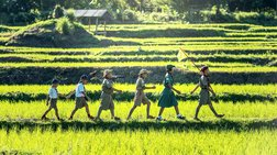 ΟΑΕΔ: Aπό την Παρασκευή οι αιτήσεις για συμμετοχή σε παιδικές κατασκηνώσεις