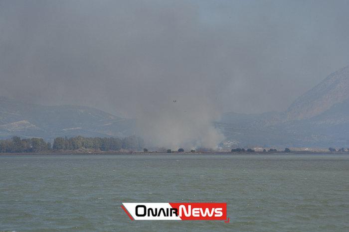 Μεγάλη φωτιά σε εξέλιξη στο Μεσολόγγι - εικόνα 2