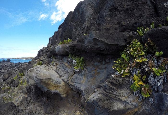 Reuters: Οδοιπορικό στο Νησί του Πάσχα, το πιο απομονωμένο του κόσμου - εικόνα 11
