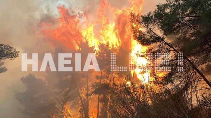 Ηλεία: Ανεξέλεγκτη μαίνεται η φωτιά στη Στροφυλιά