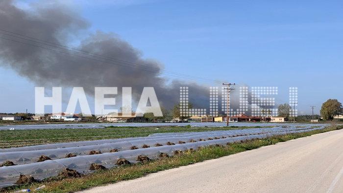 Ηλεία: Ανεξέλεγκτη μαίνεται η φωτιά στη Στροφυλιά - εικόνα 2