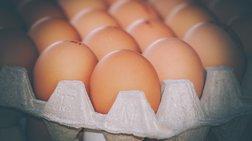 33.000 αυγά δεσμεύτηκαν στο λιμάνι του Πειραιά