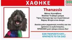 deutero-spot-twn-anel-xathike-o-thanassis-to-kanis-binteo
