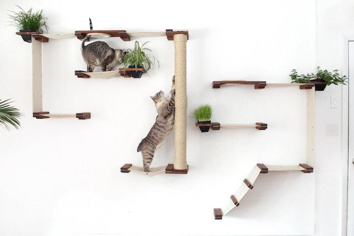 """""""Παιδότοπος"""" για γάτες (φωτό)"""