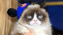 """Πέθανε η πιο διάσημη """"γκρινιάρα"""" γάτα του διαδικτύου"""