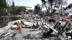 WWF: Κενά & ελλείψεις στην αντιμετώπιση πυρκαγιών παρά το Μάτι