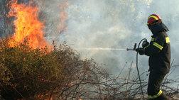 Σε εξέλιξη δασική πυρκαγιά στα Μέγαρα - Ισχυρές δυνάμεις