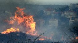 Πολύ υψηλός κίνδυνος πυρκαγιάς και αύριο Σάββατο