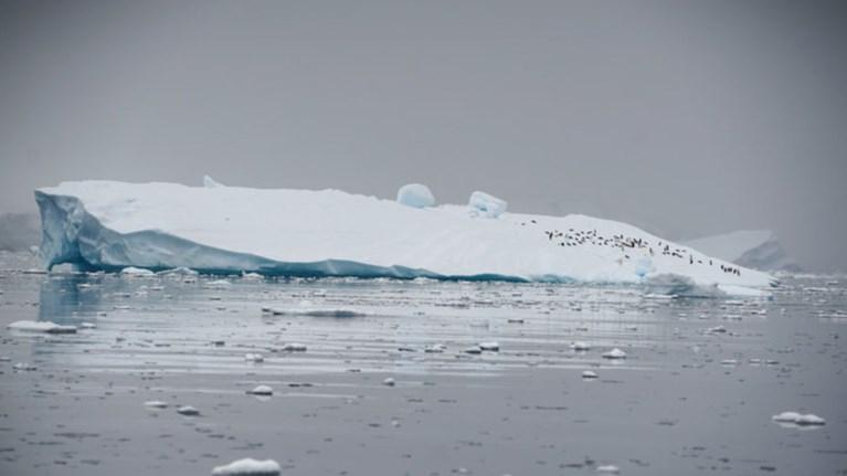 dramatiki-surriknwsi-twn-pagwn-tis-antarktikis