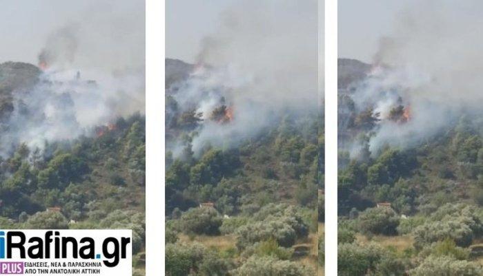 Υπό έλεγχο η φωτιά στα Σπάτα, κοντά σε εμπορικό κέντρο