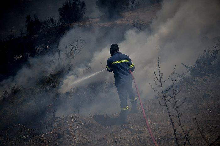 Τέσσερα τα πύρινα μέτωπα στην Εύβοια - Τι εκτιμά η Πυροσβεστική - εικόνα 3
