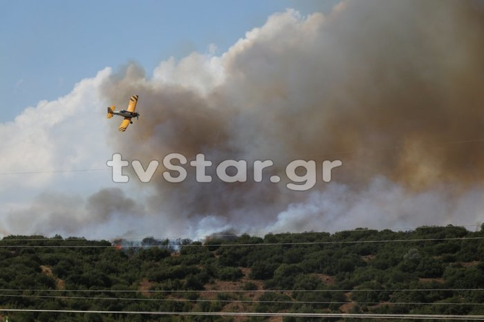 Φθιώτιδα: Σε εξέλιξη πυρκαγιά κοντά στη Μακρακώμη