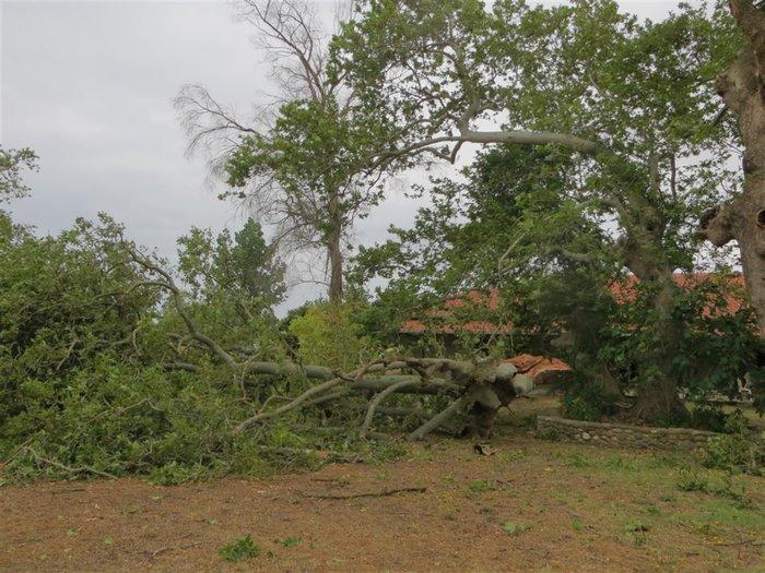 """Χαλκιδική: Η καταιγίδα """"χτύπησε"""" τους αρχαιολογικούς χώρους - εικόνα 3"""